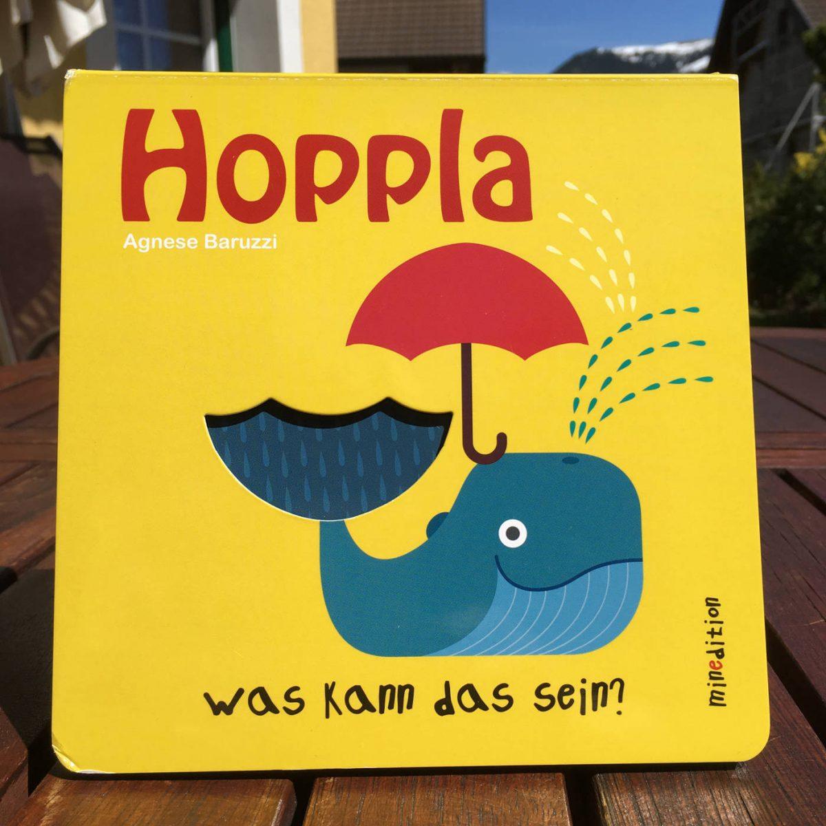 Agnese Baruzzi Hoppla, was kann das sein Buchtipp Buchempfehlung Brigitte Wallingers Kinderbuchblog Jugendbuchblog geniale Bücher Feuer und Flamme für junge Literatur Pappbilderbuch