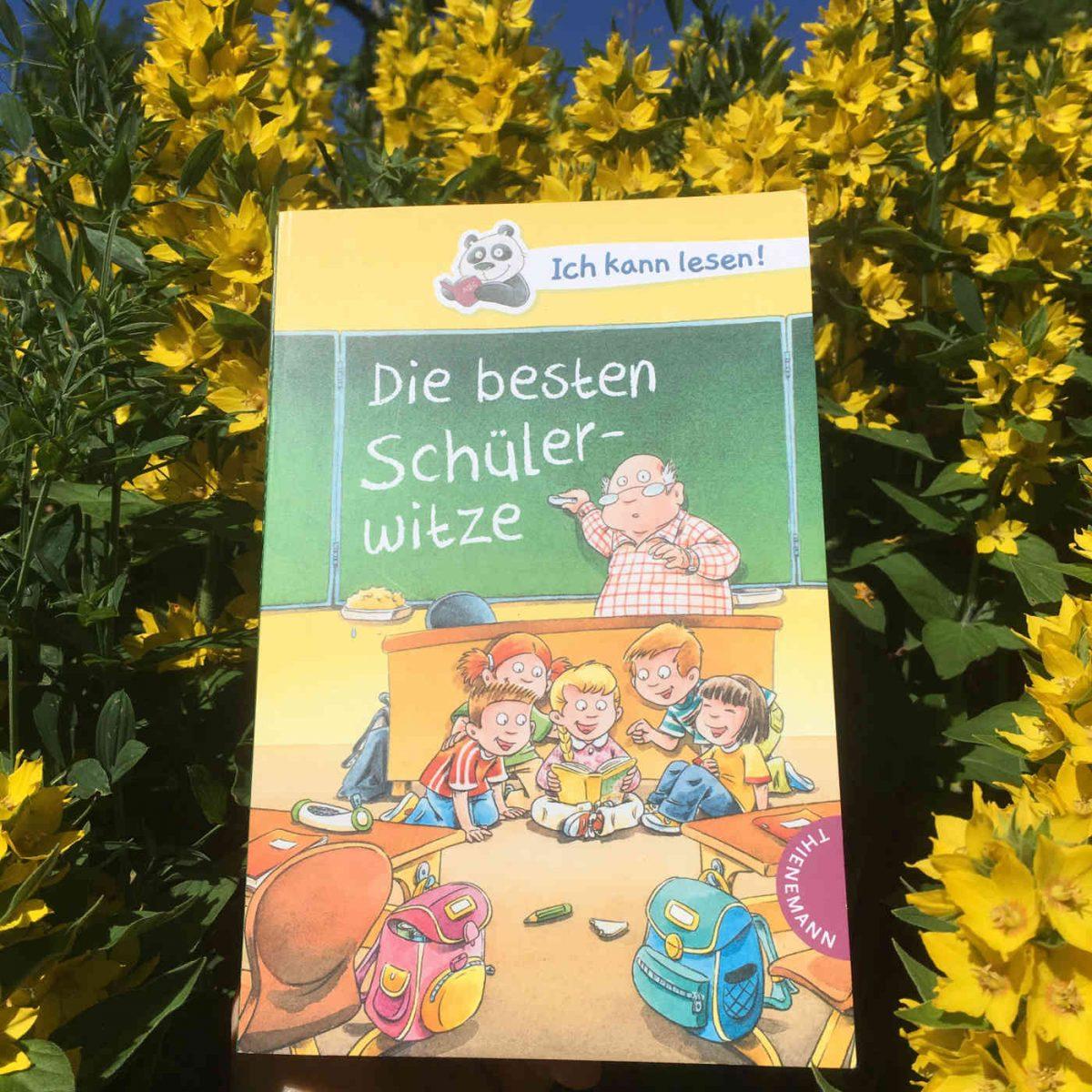 Dirk Hennig: Die besten Schülerwitze