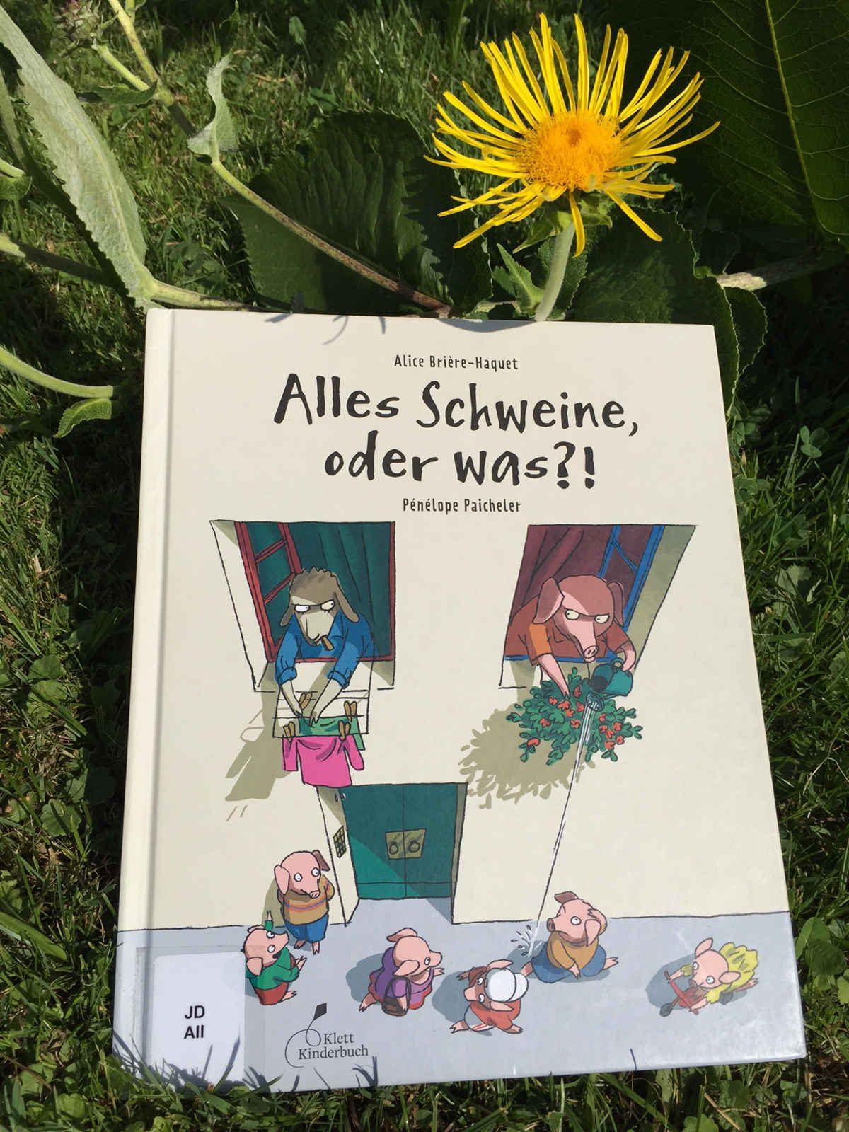 Alice Briere Haquet Penelope Paicheler Alles Schweine oder was Buchtipp Buchempfehlung Kinderbuchblog Brigitte Wallinger