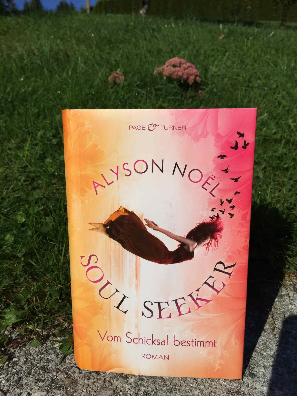 Alyson Noel Vom Schicksal bestimmt YA Roman Jugendbuch Empfehlung Buchtipp . Kinderbuchblog Jugendbuchblog