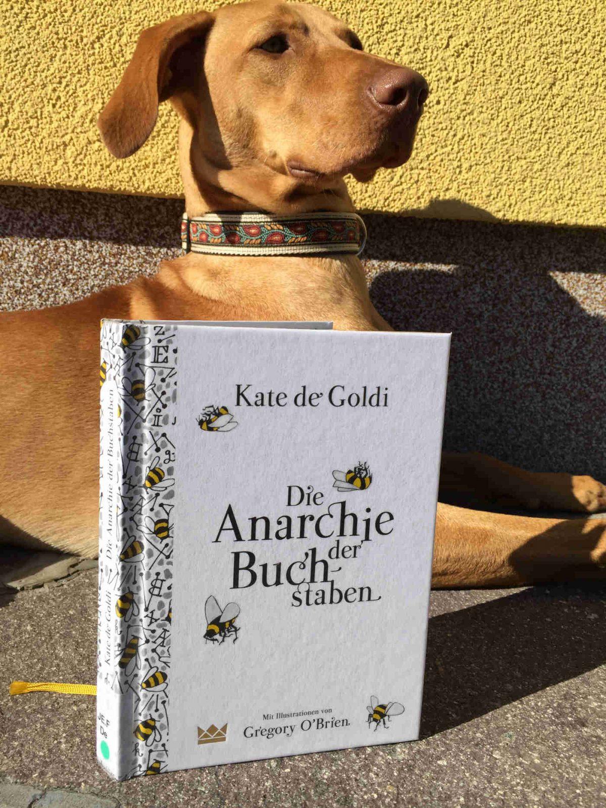 Kate de Goldi Die Anarchie der Buchstaben Brigitte Wallinger Kinderbuchblog Jugendbuchblog Buchtipp Buchempfehlung Kinder Jugendliche geniales Buch Lesetipp