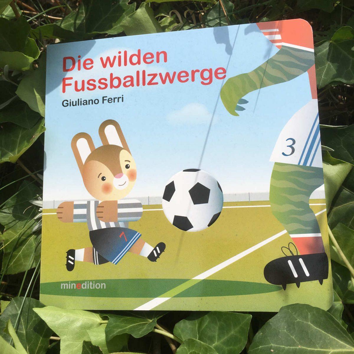 Giuliano Ferri Die wilden Fußballzwerge Fußballbuch Bilderbuch Kinderbuchblog Brigitte Wallinger Buchtipps Buchempfehlung geniale Bücher Fußballweltmeisterschaft Frauen