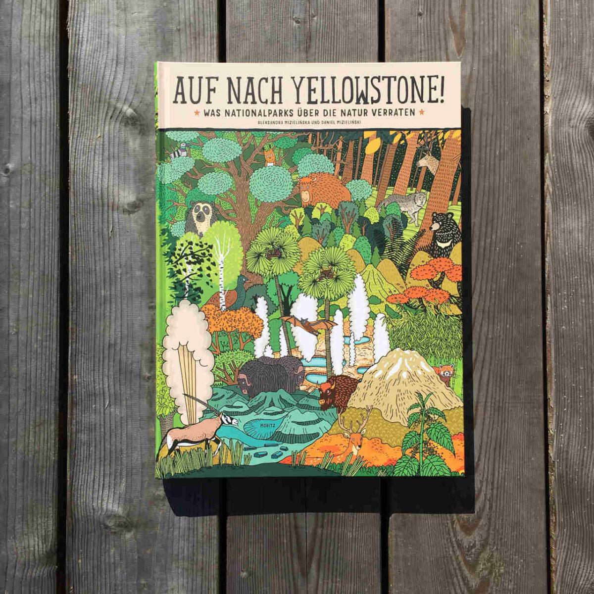 Sachbuch X Comic: Auf nach Yellowstone!